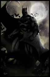 The Dark Knight by ErikVonLehmann