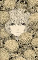 New giant zinnias by rufu-nguyen
