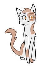 Sunpaw fullbody  by LunaInvader