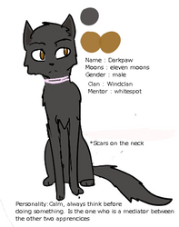 Darkpaw ref sheet by LunaInvader