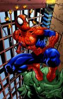 Spider sense colors by ZethKeeper