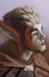 Orlan 2 by Dandzialf