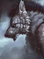 Werewolf by Dandzialf