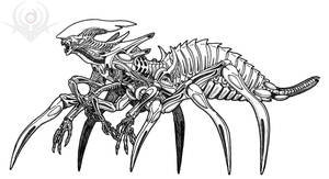 Spider worker Alien by scorpenomorph
