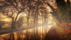 Morning Mist by ChrisDonohoe