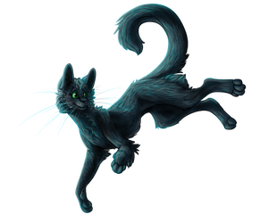 Warrior-Cats-Girl14 Gift by Aleris37
