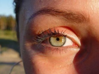 Diana's eye by buzzpotamkin