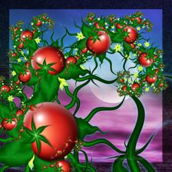 Pomodori by Liuanta