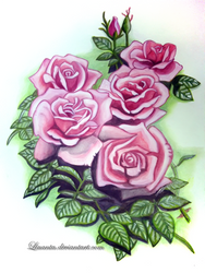 Roses by Liuanta