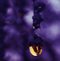 Angel in a water drop by Angie-AgnieszkaB
