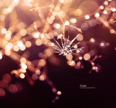 i found Magic by Angie-AgnieszkaB