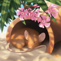 Siesta Mouse by StefanieDworschak