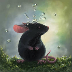 Rain Mouse by love--or--death