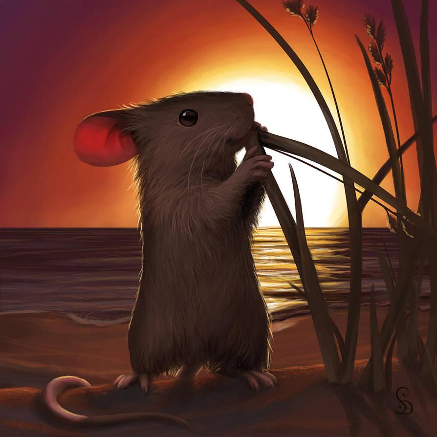 Sunset Mouse by StefanieDworschak