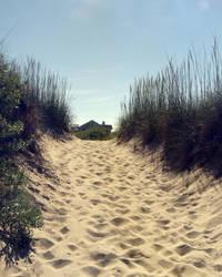 Sandy Path by photog-road