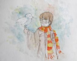 The boy and his owl by SoraAkihiru