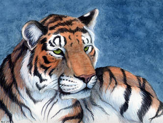 Tiger For WildCat Revision by Leona