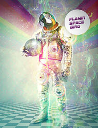 Flamin' Space Bird by Wyel