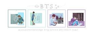 BTS_icon by DanaSel