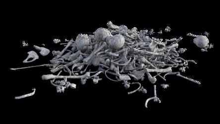 Them Bones Legacy 05 by coolzero2a