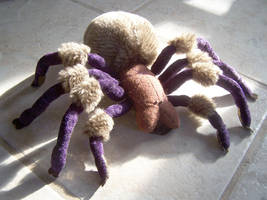 Tarantula Plush Project 2 by RacieB