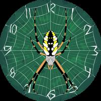Argiope aurantia clock by RacieB