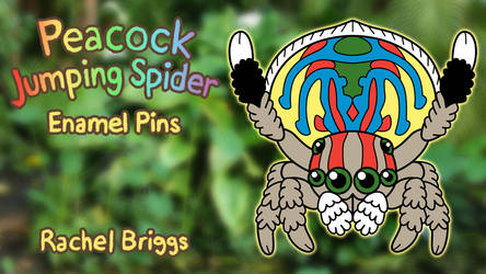 Peacock Jumping Spider Enamel Pins by RacieB