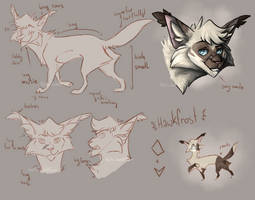 Character Design: Hawkfrost by K0rdi4n