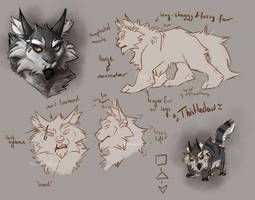 Character Design: Thistleclaw by K0rdi4n