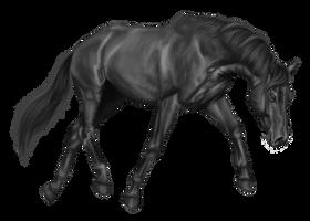Warmblood Greyscale by emmy1320