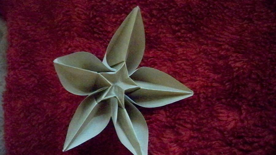 Origami Carambola Flower By Zanadov On Deviantart