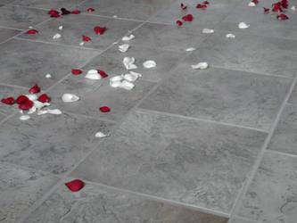 Wedding Roses by Jonacid