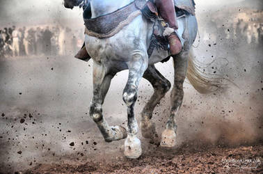 Tborida, knight show in Morocco by shaheeed
