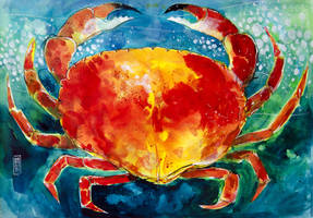 Crab by andreuccettiart