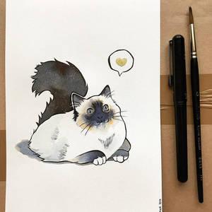 Inktober 2017 - Day 6 - Cat by Hikasawr