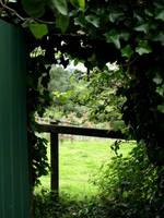 The Green gate by Miso-no-Tsuki