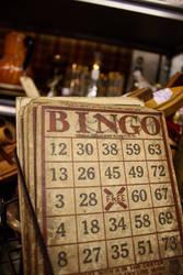 Bingo by blondesRsnart