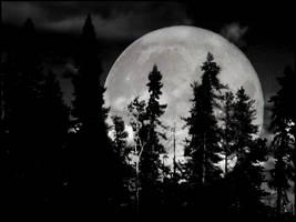 moon by nyktalgia