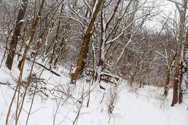 Winter Hike by VertigoArt