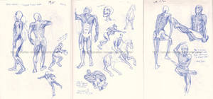 Body Worlds Sketches by Quarter-Virus