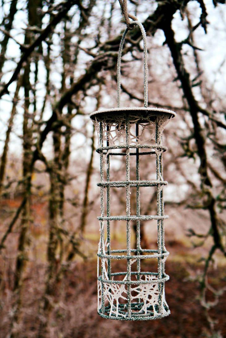 Winter Dreamcatcher by frenchija