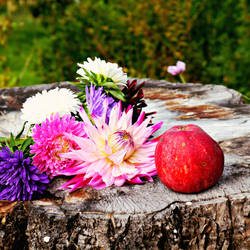 Autumn Melancholy by frenchija