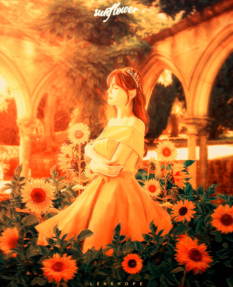 181009 | Sunflower by lenehope
