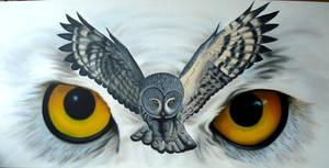 Owls by Ahau2