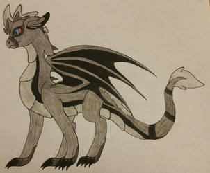 Redraw: Night Dragon by SabrinaOfNightClan