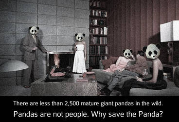 Pandas are not people. by technics