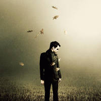 You Crashed In The Clouds by MartinStranka