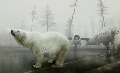 Bear With Me by MartinStranka