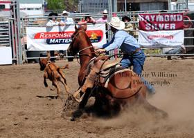 Helix Rodeo 09: Gotcha by saudimack