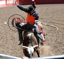 CWU Rodeo: Bull Riding by saudimack